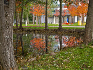 Herbst-Spiegelung – Holger Rothermel