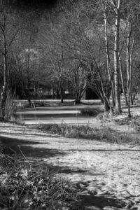 Starr ruht der See – Holger Rothermel