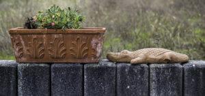 Glückliches Krokodil – Karl Röser