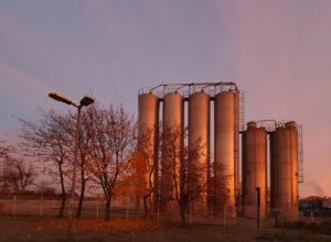 Sonnenaufgang im November – Ute Krämer