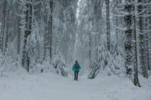 Winter – Winfried Toussaint