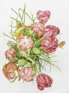Tulpen – Karl Röser